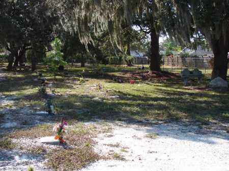 *HOPEWELL MEMORIAL CEMETERY, OVERVIEW #1 - Sarasota County, Florida | OVERVIEW #1 *HOPEWELL MEMORIAL CEMETERY - Florida Gravestone Photos