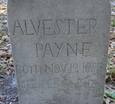 PAYNE, ALVESTER - Sarasota County, Florida | ALVESTER PAYNE - Florida Gravestone Photos