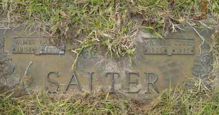 SALTER, MILDRED - Sarasota County, Florida | MILDRED SALTER - Florida Gravestone Photos