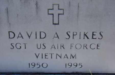 SPIKES (VETERAN VIET), DAVID A. - Sarasota County, Florida | DAVID A. SPIKES (VETERAN VIET) - Florida Gravestone Photos
