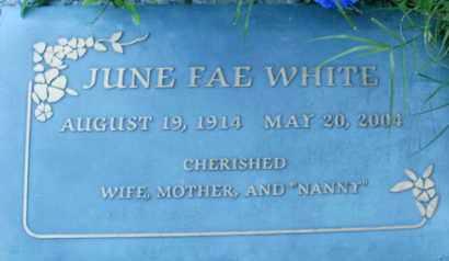 WHITE, JUNE  FAE - Sarasota County, Florida | JUNE  FAE WHITE - Florida Gravestone Photos