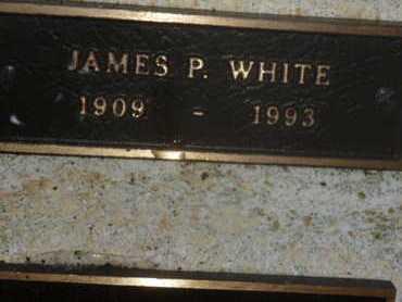 WHITE, JAMES P - Sarasota County, Florida | JAMES P WHITE - Florida Gravestone Photos