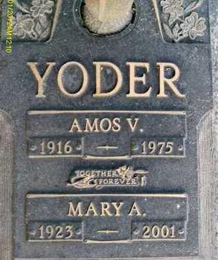 YODER, AMOS V. - Sarasota County, Florida | AMOS V. YODER - Florida Gravestone Photos