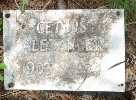 ALEXANDER, CEPHUS - Seminole County, Florida   CEPHUS ALEXANDER - Florida Gravestone Photos