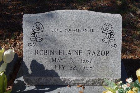 RAZOR, ROBIN  ELAINE  - Seminole County, Florida | ROBIN  ELAINE  RAZOR - Florida Gravestone Photos