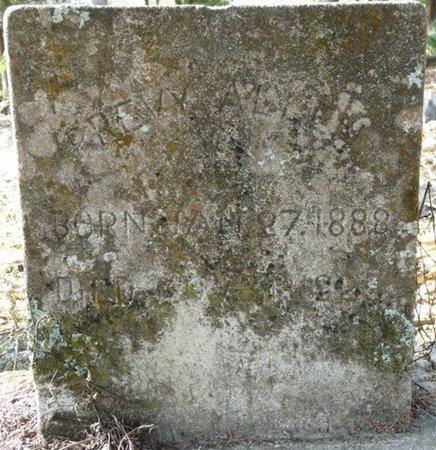 ALLEN, PREVY - Wakulla County, Florida | PREVY ALLEN - Florida Gravestone Photos