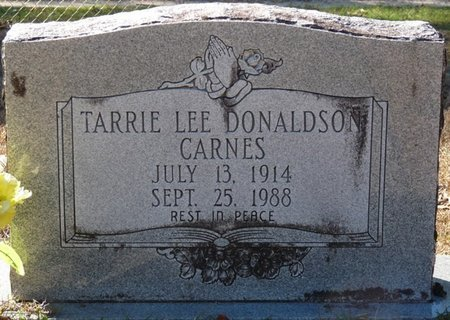 CARNES, TARRIE LEE - Wakulla County, Florida   TARRIE LEE CARNES - Florida Gravestone Photos