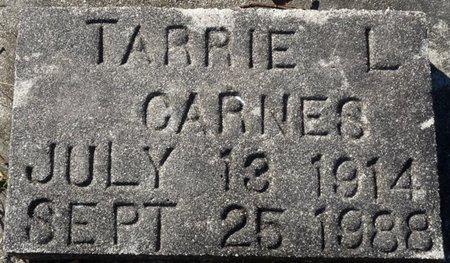 CARNES, TARRIE L - Wakulla County, Florida | TARRIE L CARNES - Florida Gravestone Photos