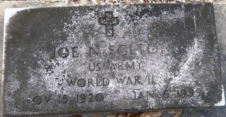 EGLTON (VETERAN WWII), JOE N (NEW) - Wakulla County, Florida   JOE N (NEW) EGLTON (VETERAN WWII) - Florida Gravestone Photos