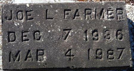 FARMER, JOE L - Wakulla County, Florida | JOE L FARMER - Florida Gravestone Photos