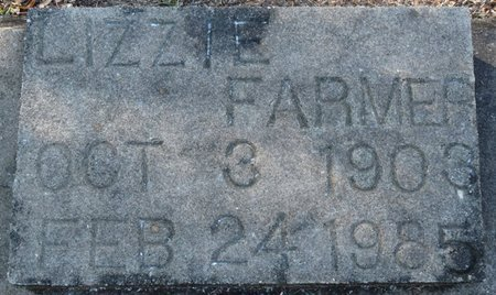 FARMER, LIZZIE - Wakulla County, Florida | LIZZIE FARMER - Florida Gravestone Photos