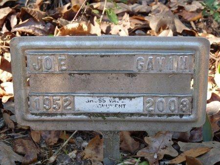 GAVIN, JOE N - Wakulla County, Florida | JOE N GAVIN - Florida Gravestone Photos