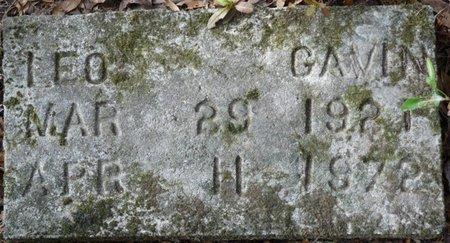 GAVIN, LEO - Wakulla County, Florida   LEO GAVIN - Florida Gravestone Photos