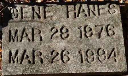 HANES, GENE - Wakulla County, Florida | GENE HANES - Florida Gravestone Photos