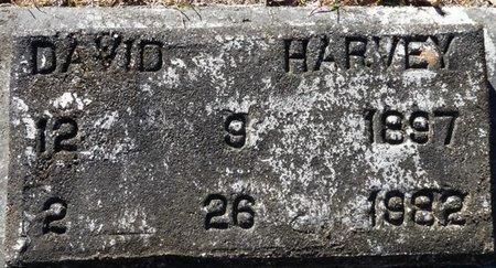 HARVEY, DAVID - Wakulla County, Florida   DAVID HARVEY - Florida Gravestone Photos