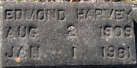 HARVEY, EDMOND - Wakulla County, Florida | EDMOND HARVEY - Florida Gravestone Photos