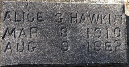 HAWKINS, ALICE G - Wakulla County, Florida   ALICE G HAWKINS - Florida Gravestone Photos