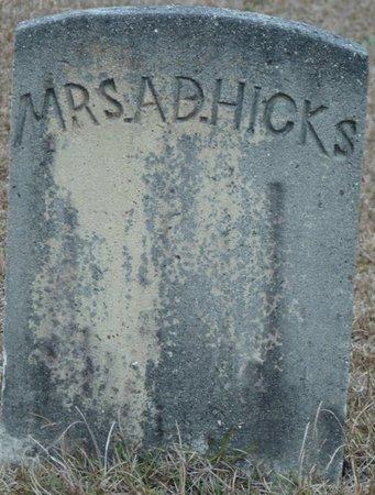 HICKS, A.D. - Wakulla County, Florida   A.D. HICKS - Florida Gravestone Photos