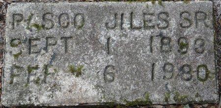 JILES SR., PASCO - Wakulla County, Florida   PASCO JILES SR. - Florida Gravestone Photos