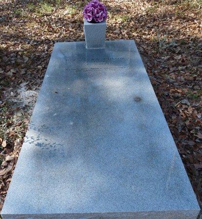 LEWIS JOHNSON, HAZEL - Wakulla County, Florida | HAZEL LEWIS JOHNSON - Florida Gravestone Photos