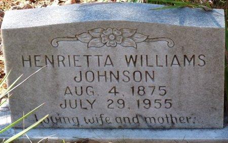 WILLIAMS JOHNSON, HENRIETTA - Wakulla County, Florida | HENRIETTA WILLIAMS JOHNSON - Florida Gravestone Photos