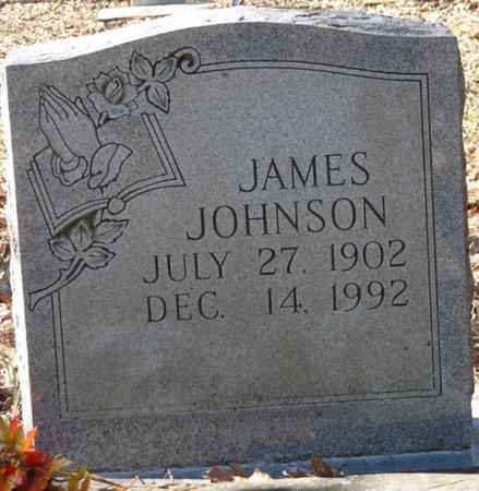 JOHNSON, JAMES - Wakulla County, Florida | JAMES JOHNSON - Florida Gravestone Photos