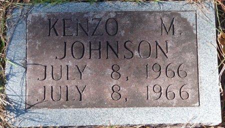 JOHNSON, KENZO M - Wakulla County, Florida   KENZO M JOHNSON - Florida Gravestone Photos