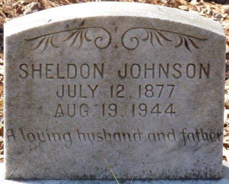 JOHNSON, SHELDON - Wakulla County, Florida | SHELDON JOHNSON - Florida Gravestone Photos