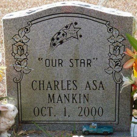 MANKIN, CHARLES ASA - Wakulla County, Florida | CHARLES ASA MANKIN - Florida Gravestone Photos