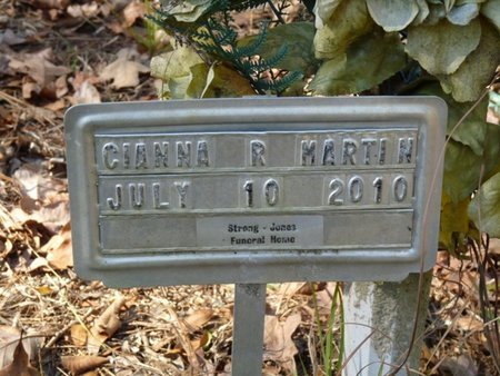 MARTIN, CIANNA R - Wakulla County, Florida   CIANNA R MARTIN - Florida Gravestone Photos