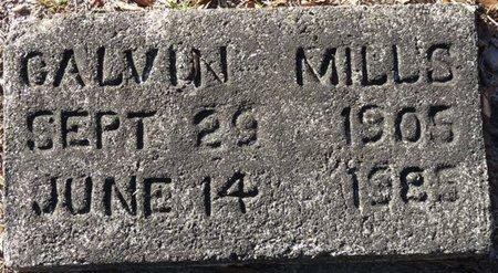 MILLS, CALVIN - Wakulla County, Florida | CALVIN MILLS - Florida Gravestone Photos