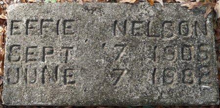 ALLEN NELSON, EFFIE MAE - Wakulla County, Florida | EFFIE MAE ALLEN NELSON - Florida Gravestone Photos
