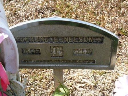 NELSON, JEROME EDWARD - Wakulla County, Florida | JEROME EDWARD NELSON - Florida Gravestone Photos