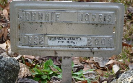 NORRIS, JOHNNIE MAE - Wakulla County, Florida | JOHNNIE MAE NORRIS - Florida Gravestone Photos