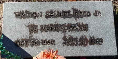REED JR. (VETERAN), WALTON SAMUEL (NEW) - Wakulla County, Florida | WALTON SAMUEL (NEW) REED JR. (VETERAN) - Florida Gravestone Photos