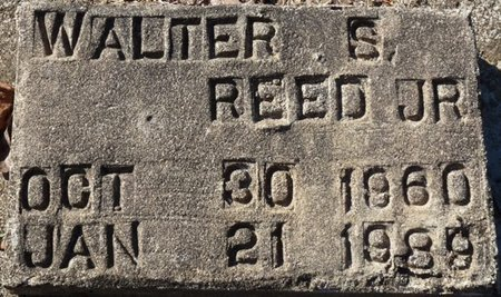 REED JR., WALTON SAMUEL - Wakulla County, Florida   WALTON SAMUEL REED JR. - Florida Gravestone Photos