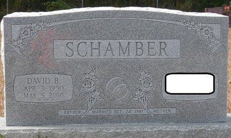 SCHAMBER, DAVID BRUCE - Wakulla County, Florida | DAVID BRUCE SCHAMBER - Florida Gravestone Photos