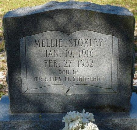STOKLEY, MELLIE MELVINA - Wakulla County, Florida | MELLIE MELVINA STOKLEY - Florida Gravestone Photos