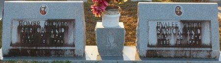 STRICKLAND, HOMER GLOVER - Wakulla County, Florida | HOMER GLOVER STRICKLAND - Florida Gravestone Photos