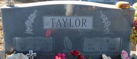 "TAYLOR, NELSON ""BUD"" - Wakulla County, Florida | NELSON ""BUD"" TAYLOR - Florida Gravestone Photos"