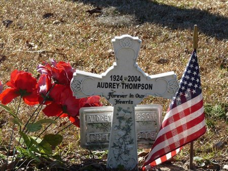DONALDSON THOMPSON, AUDREY - Wakulla County, Florida | AUDREY DONALDSON THOMPSON - Florida Gravestone Photos