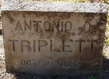 TRIPLETT, ANTONIO O - Wakulla County, Florida | ANTONIO O TRIPLETT - Florida Gravestone Photos