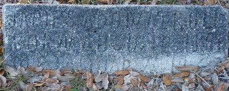 TRULL, JAMES ADDUN - Wakulla County, Florida | JAMES ADDUN TRULL - Florida Gravestone Photos
