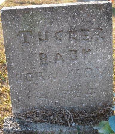 TUCKER, INFANT SON - Wakulla County, Florida   INFANT SON TUCKER - Florida Gravestone Photos