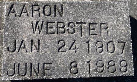 WEBSTER, AARON - Wakulla County, Florida | AARON WEBSTER - Florida Gravestone Photos