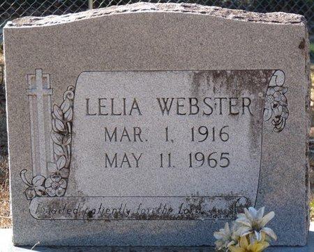 WEBSTER, LELIA - Wakulla County, Florida   LELIA WEBSTER - Florida Gravestone Photos