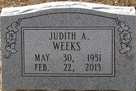 MARSH WEEKS, JUDITH ANN - Wakulla County, Florida | JUDITH ANN MARSH WEEKS - Florida Gravestone Photos