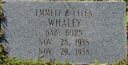 WHALEY, INFANT - Wakulla County, Florida | INFANT WHALEY - Florida Gravestone Photos