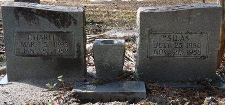 WILLIAMS, SILAS - Wakulla County, Florida | SILAS WILLIAMS - Florida Gravestone Photos