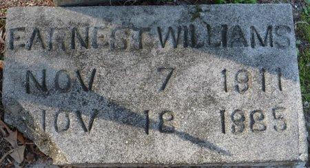 WILLIAMS, EARNEST - Wakulla County, Florida | EARNEST WILLIAMS - Florida Gravestone Photos